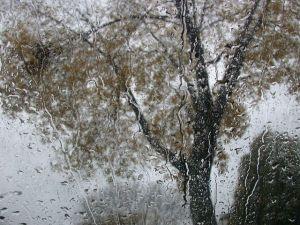 rain-1550535-640x480-compressor